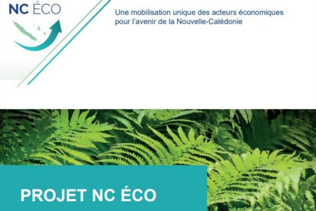 NC ECO, un document phare qui porte la voix du monde économique calédonien